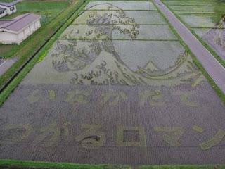 El arte del arroz