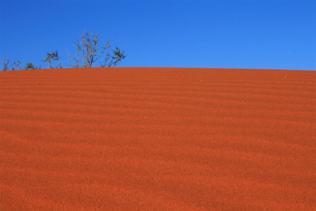 öfter regen in der wüste
