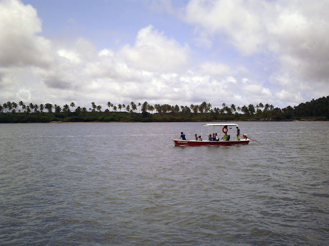 Braco no rio Ariquindá