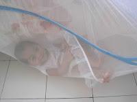 http://4.bp.blogspot.com/_9yR9OjXEXhY/TR2irqlcWQI/AAAAAAAAAOQ/bUq6jVbvqho/s200/10-1.jpg