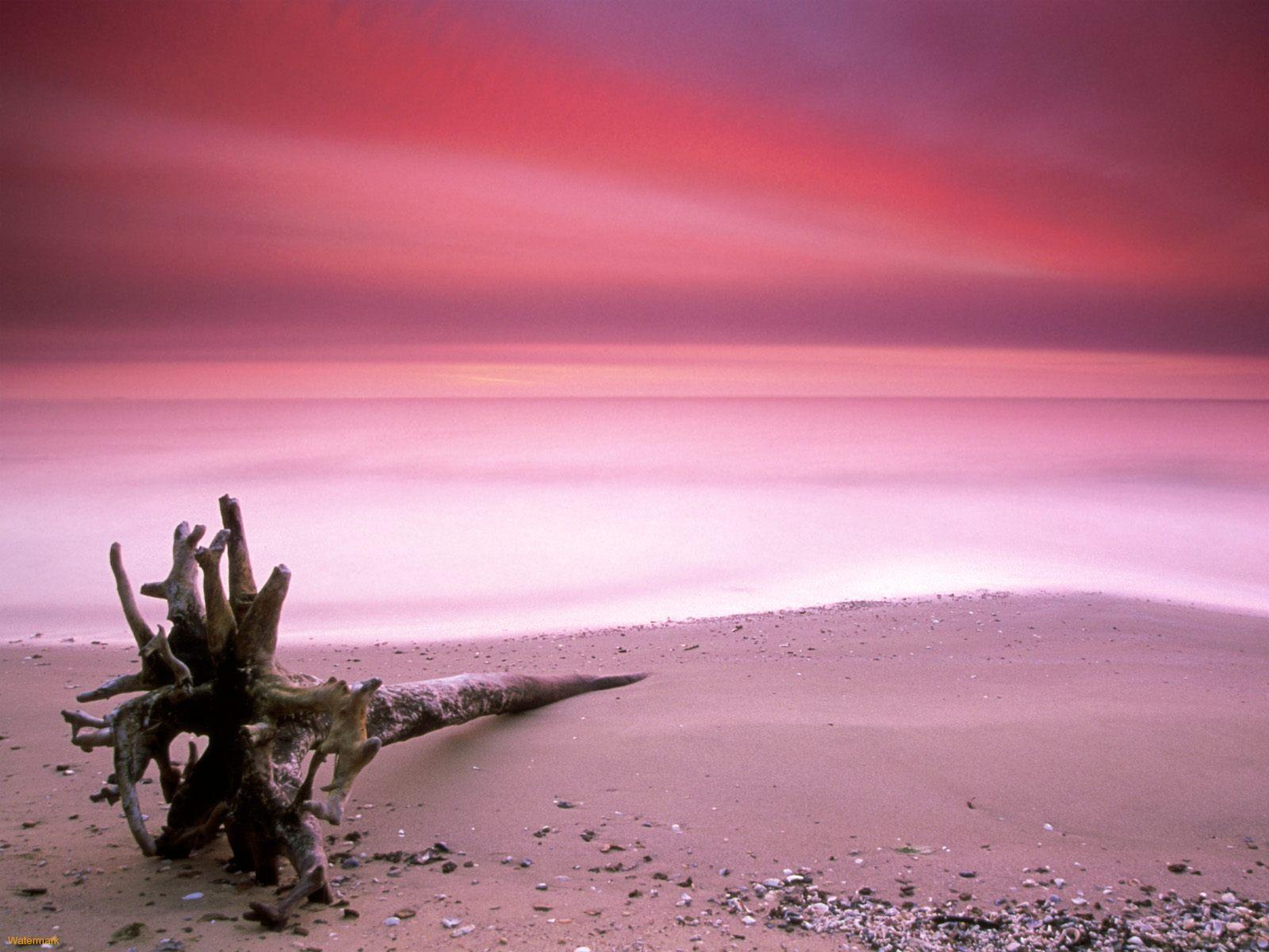 natural beach pretty wallpaper - photo #14