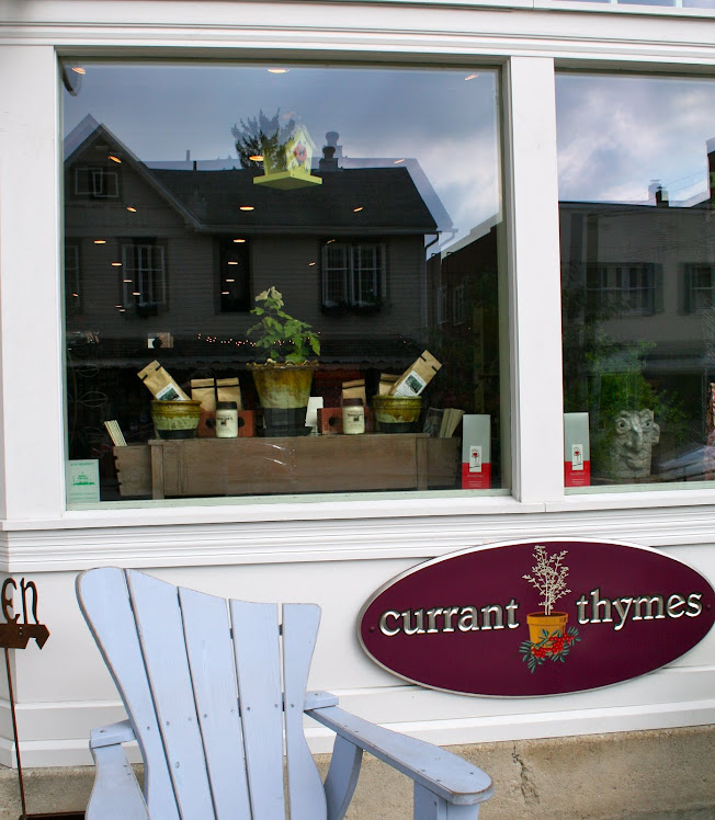 Currant Thymes window display