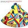 꿈에 카메라를 가져올걸 (Dream Car) - A Boy In Lesotho (EBS 리얼실험프로젝트 X 아프리카에 희망의 노래를)