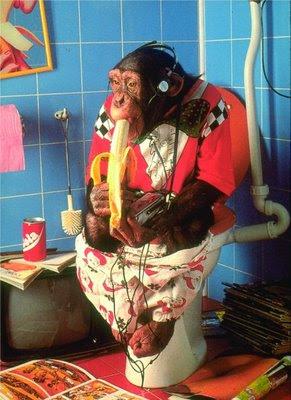 Gli animali che fanno sorridere Scimmiette  Co