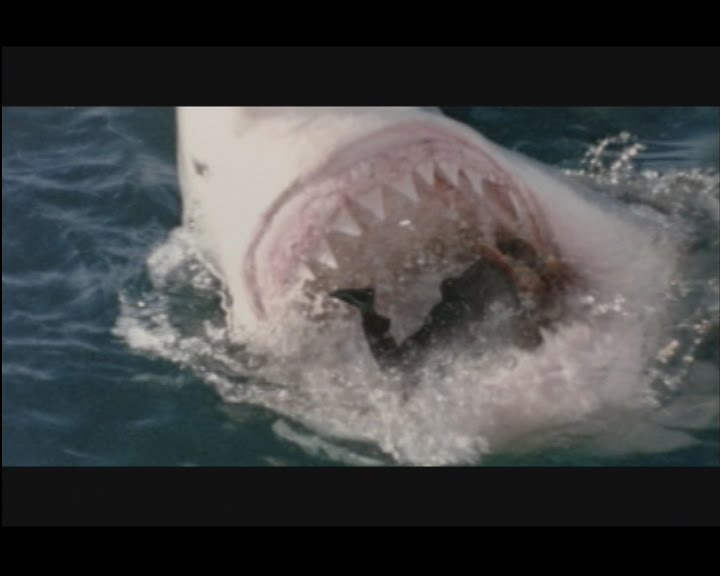 Direct to Video Connoisseur Images: Shark Attack 3 ...
