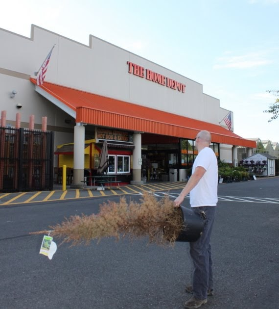 TNT Builds: Home Depot's Plant Return Policy