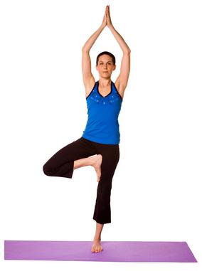 kalpavriksha the yoga tree of yogic life origin and