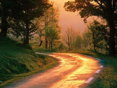Caminhos incertos