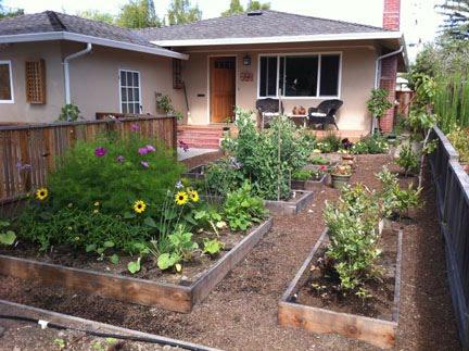 Renee's Garden Seeds: Renee's Blog: Creating My Edible ...
