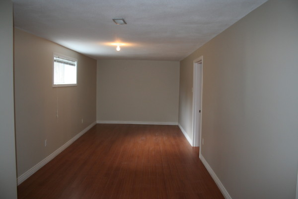 Narrow basement design home design for Long narrow basement design solution
