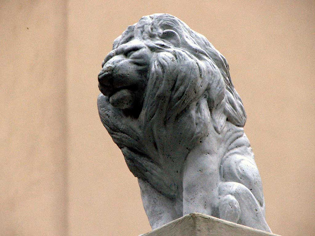 Composed lion keeping watch from a pillar, via Montebello, Livorno