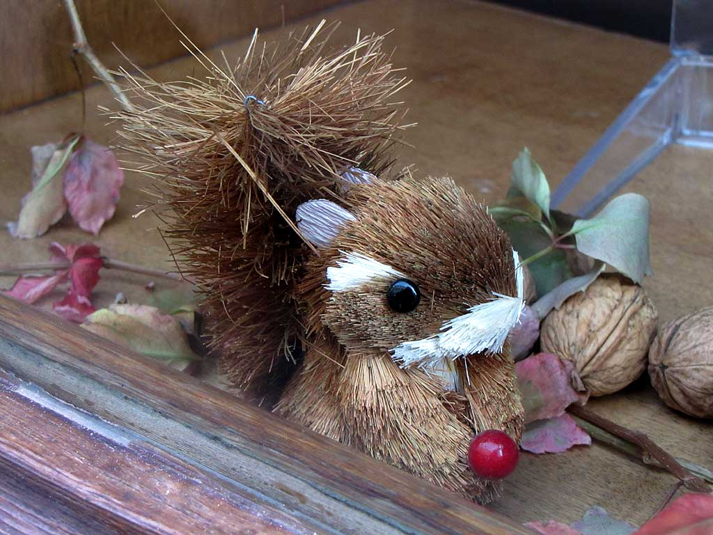 Straw squirrel, Livorno