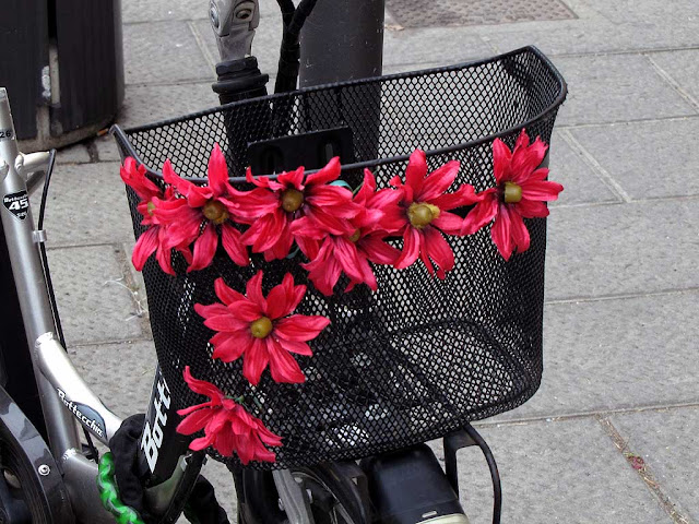 Bike basket with flowers, Livorno