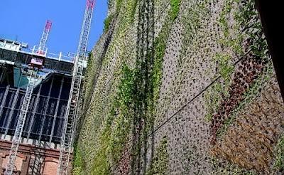 El jard n vertical de caixaforum madrid el blog de jos for Jardin vertical caixaforum madrid