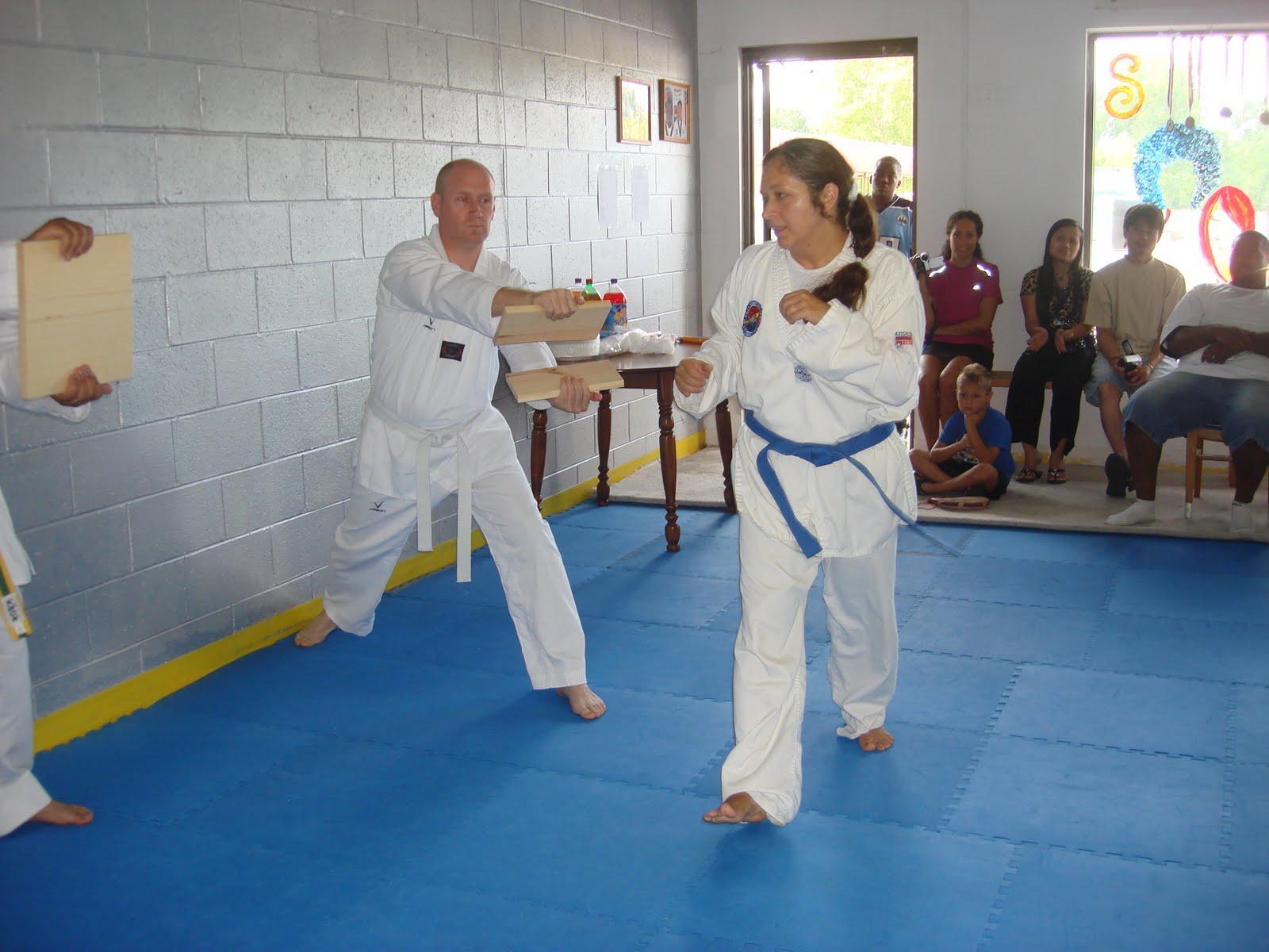 Than Phong Taekwondo Michigan Usa