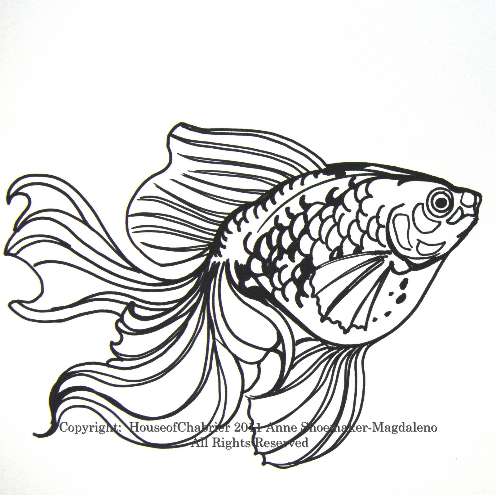 Goldfish line drawing - photo#29