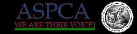 LINK TO ASPCA* The American Society for the Prevention of Cruelty to Animals
