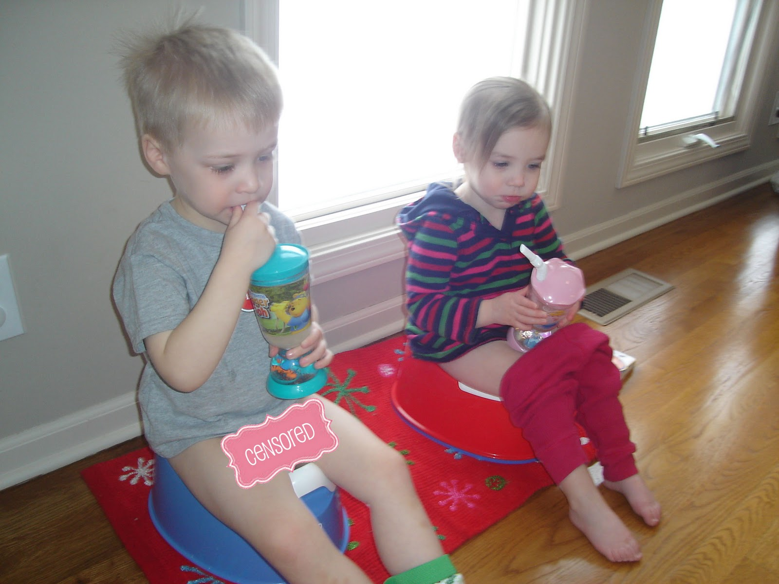 """Phelps Baby Farm: Potty Training: 3 Step Approach or """"Who ..."""