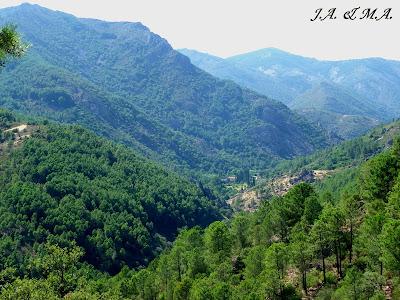 Flora, Fauna y Paisajismo del Suroeste Salmantino: Valle de Las ...
