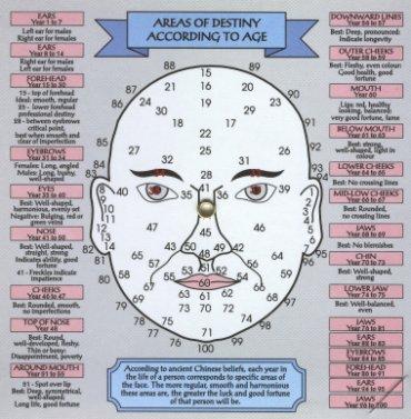 Hasil gambar untuk fisiognomi
