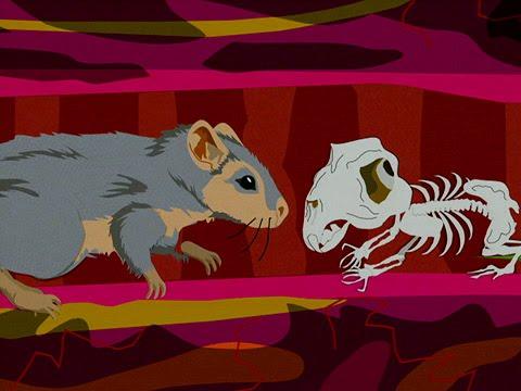 Resultado de imagen de richard gere y raton