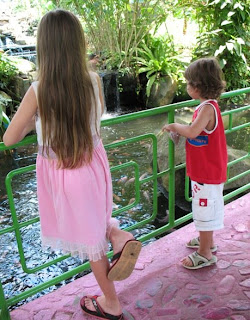 Kids feeding the fish at the butterfly garden