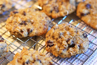 Chocolate Chip Coconut Oatmeal Cookies | The Naptime Chef