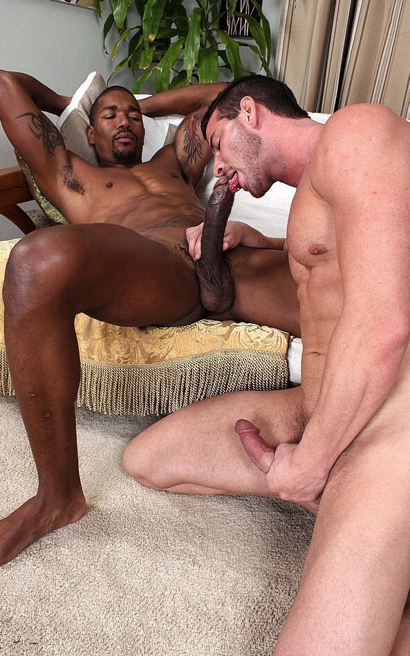 naked gay anamaniacs big cock
