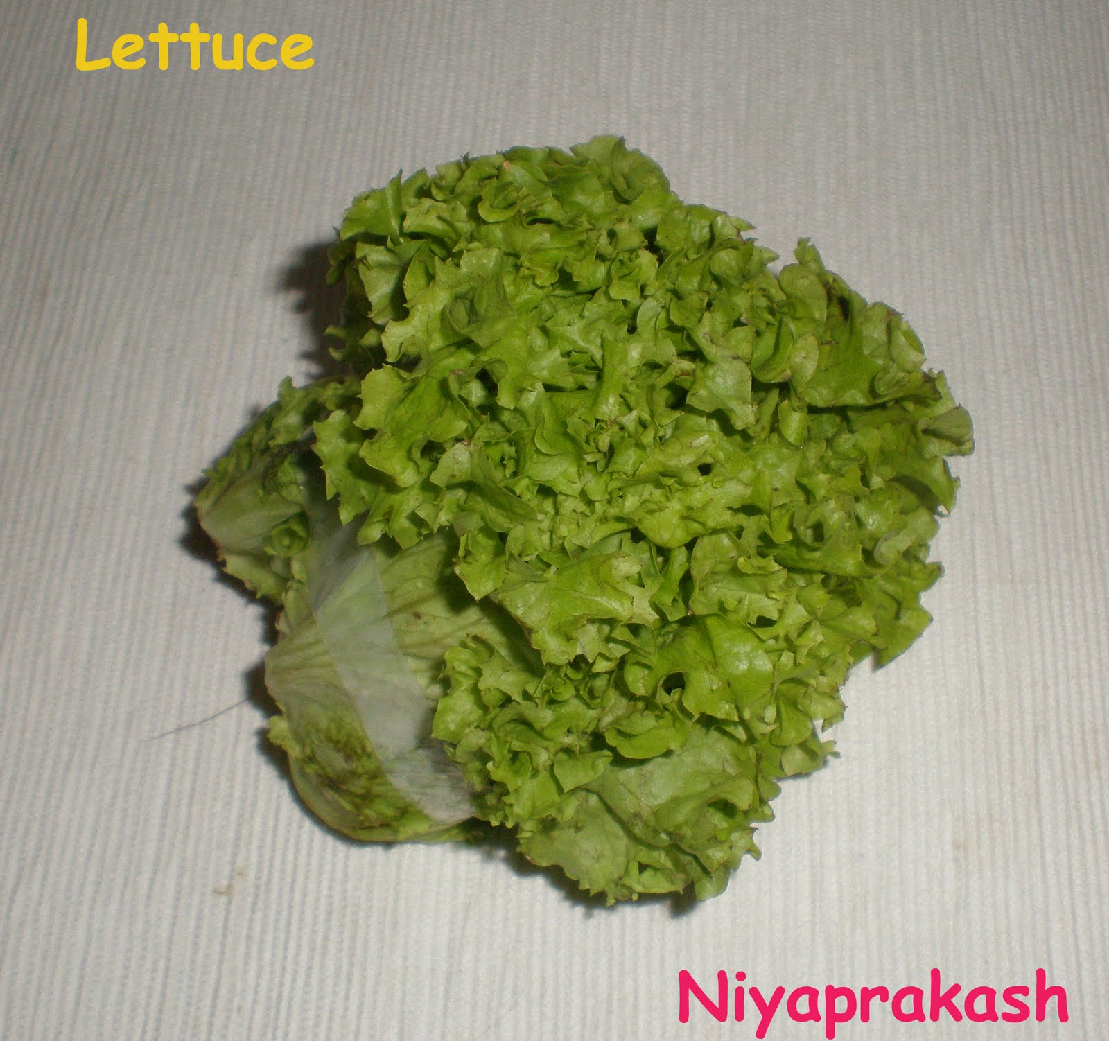 Niya's World: What is the best way to wash lettuce ?