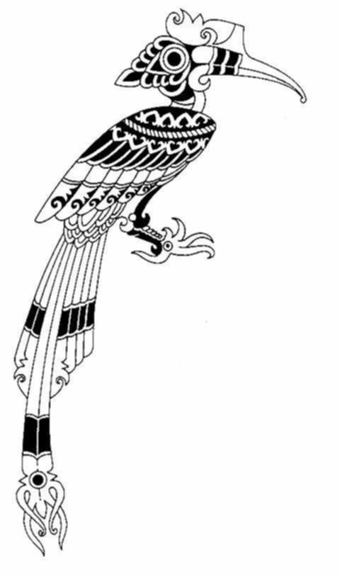 Mewarnai Gambar Burung Enggang
