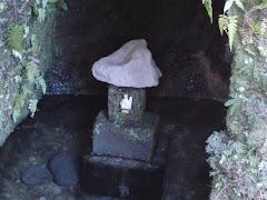 佐助稲荷神社:霊狐泉