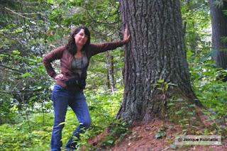 photo avant montage femme appuyée sur un arbre en foret