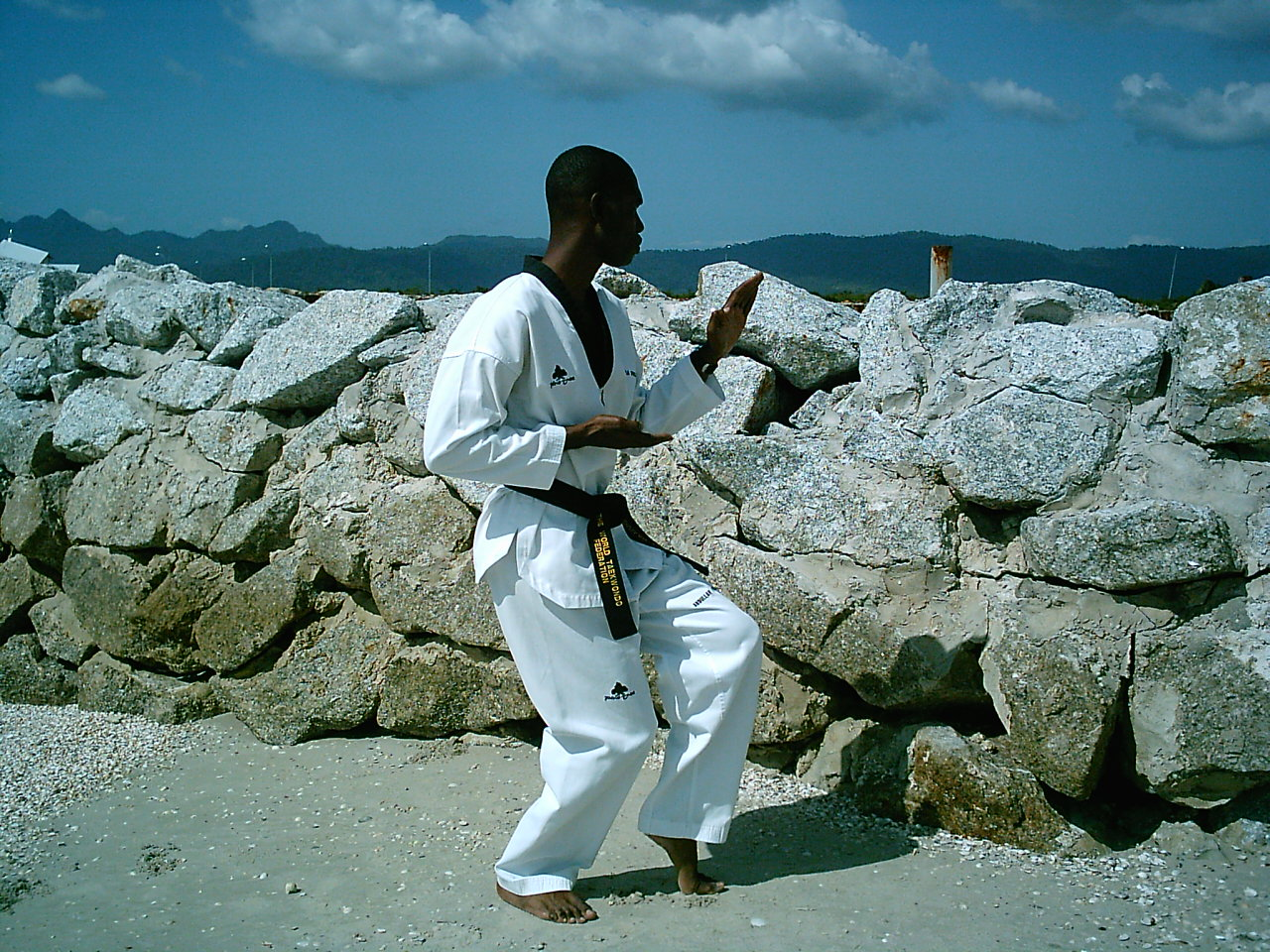 Makevelli Taekwondo