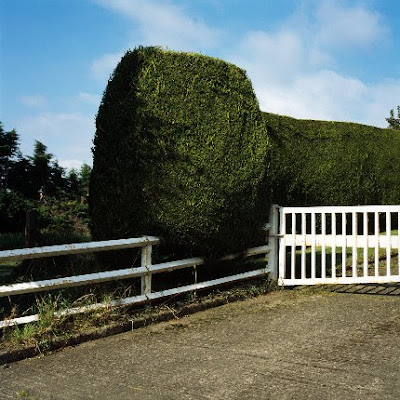 'private property, 2010', C-Print, 90x90cm, 3+2AP, copyright PDB
