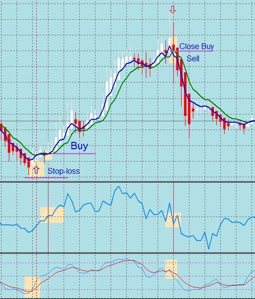 Option trading holidays