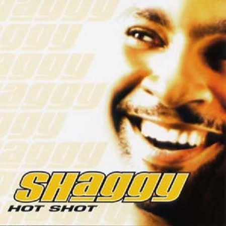 discographie shaggy
