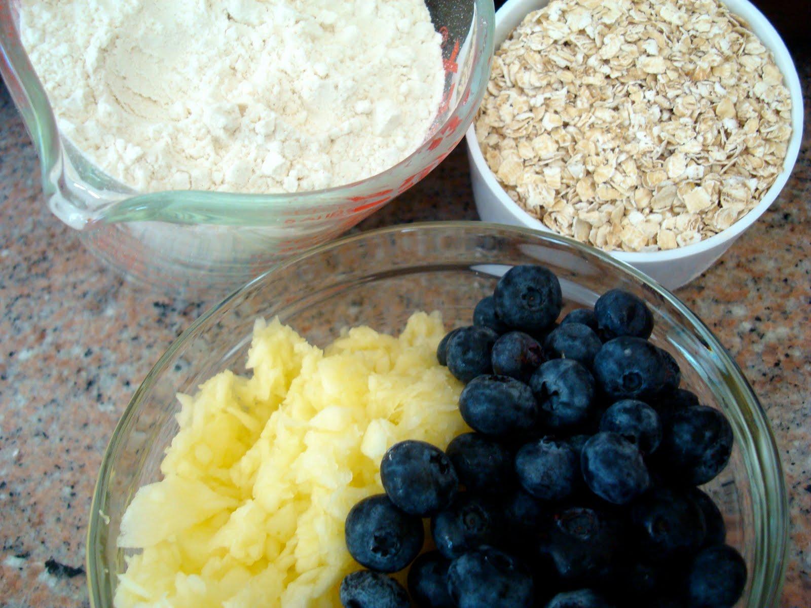 Doggie Chef Tasty Treat Apple Blueberry Oats Golden Woofs