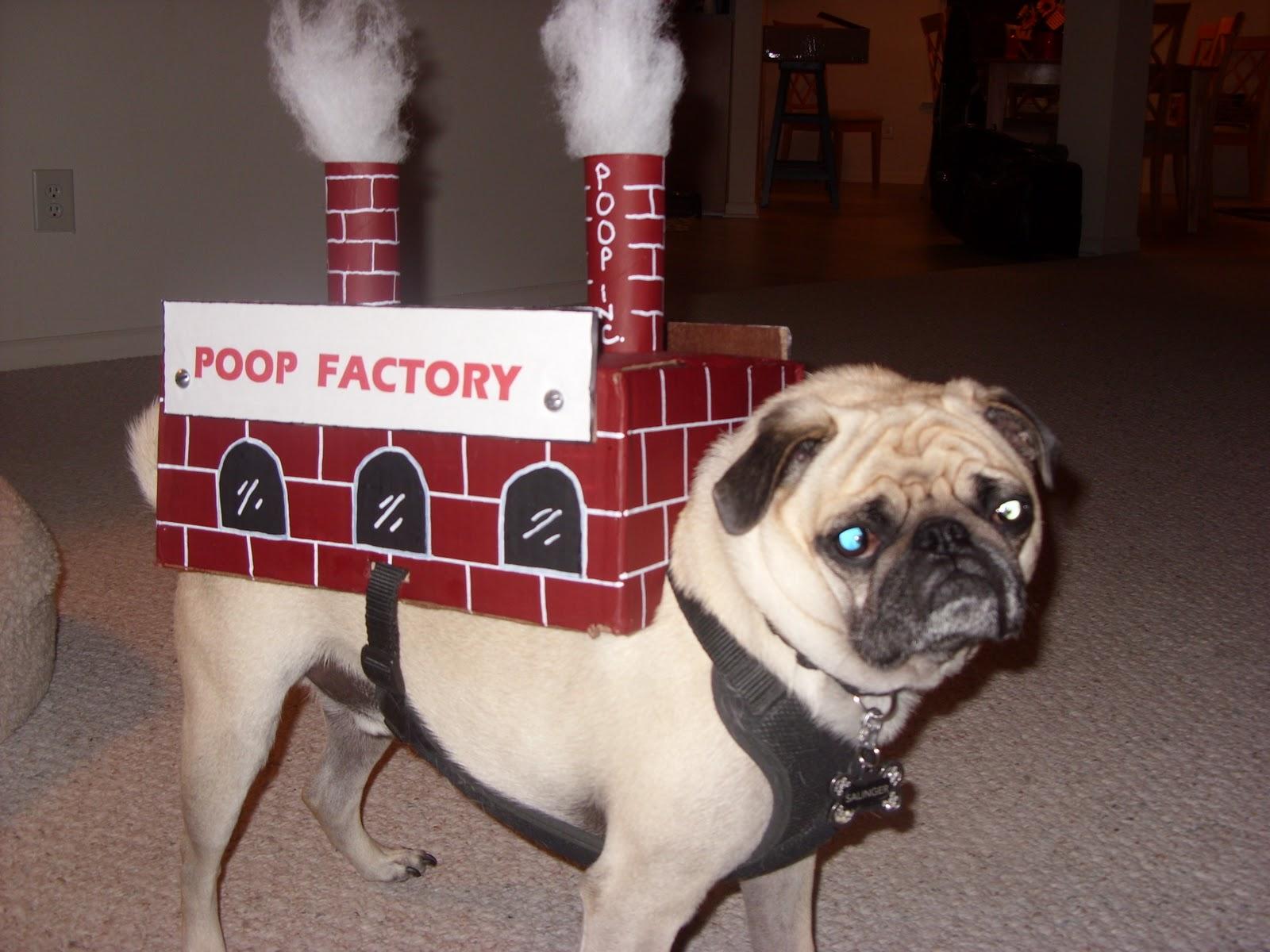 Poop costume   Etsy