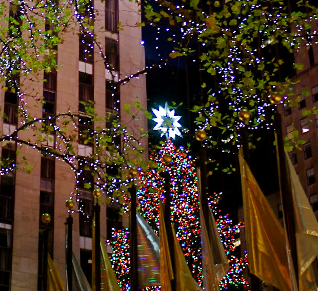 Nyc Christmas Trees In Manhattan
