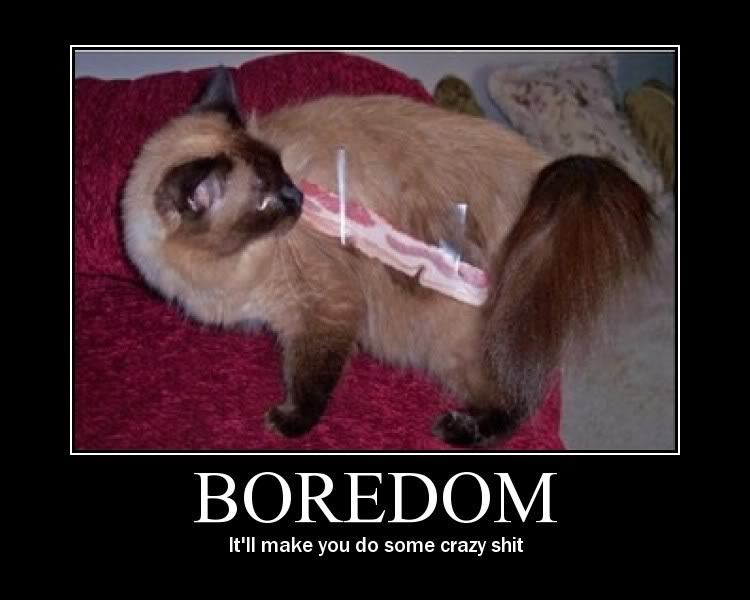 What To Do In Boredom