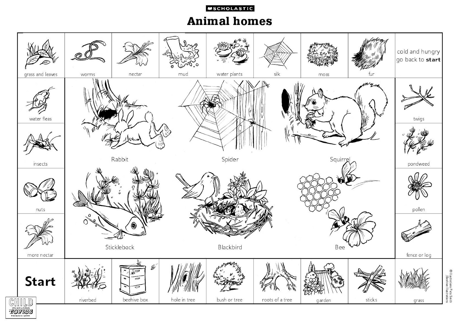 Lai Mooi Keow D Animals Lesson Where Animals Live