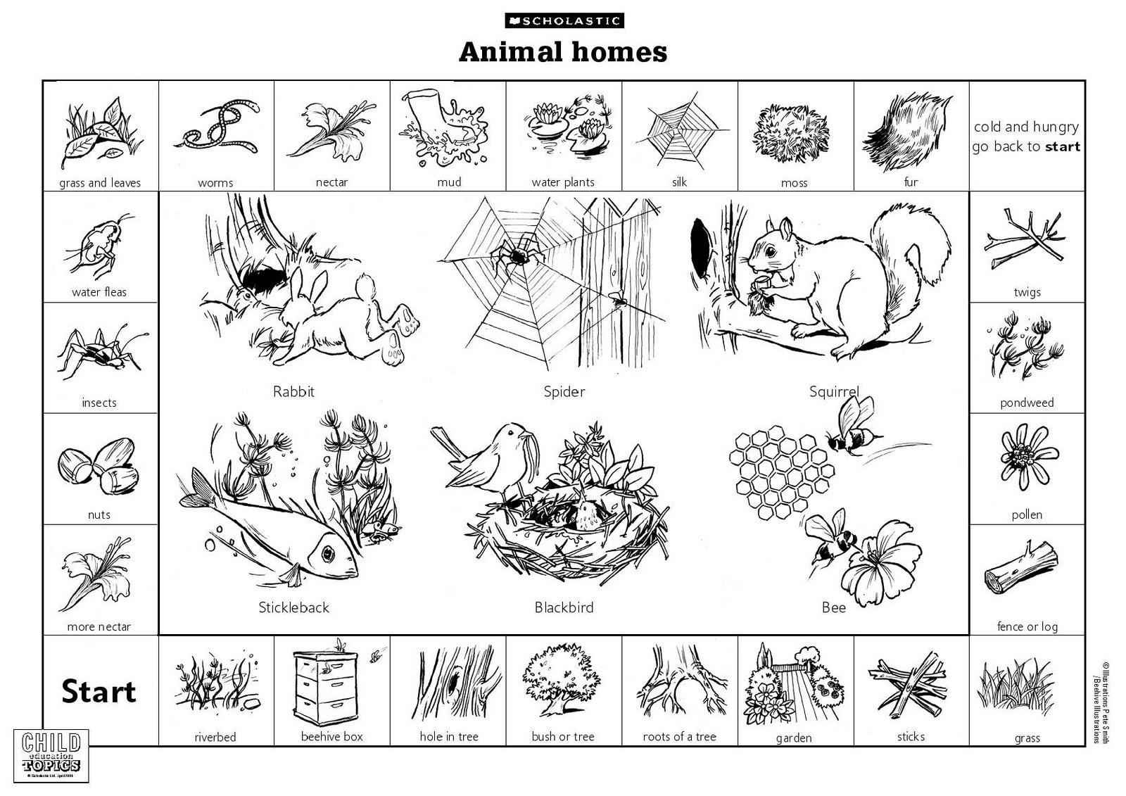 animals and their habitats worksheets kindergarten habitats worksheets have fun teaching18. Black Bedroom Furniture Sets. Home Design Ideas