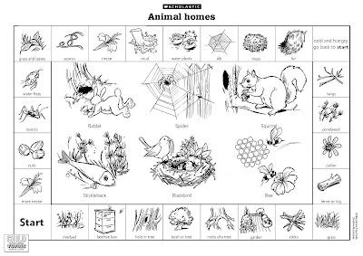 lai mooi keow d20102042511 animals lesson where animals live. Black Bedroom Furniture Sets. Home Design Ideas