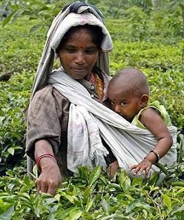 Aruban Breastfeeding Mamas Baby Wearing Around The World