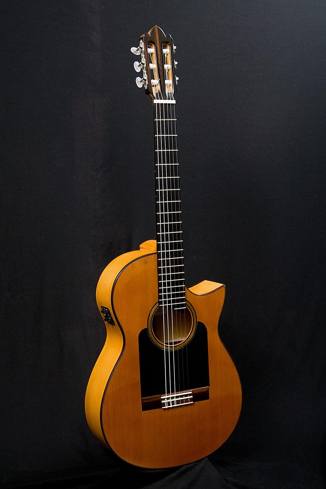guitarras custom constru das por rodolfo cucculelli