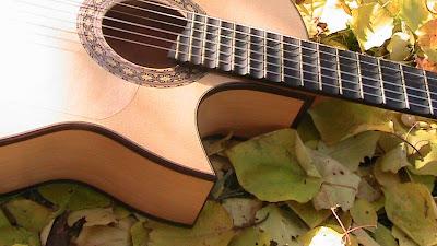 Florentinischer cutaway Flamenco guitarre.