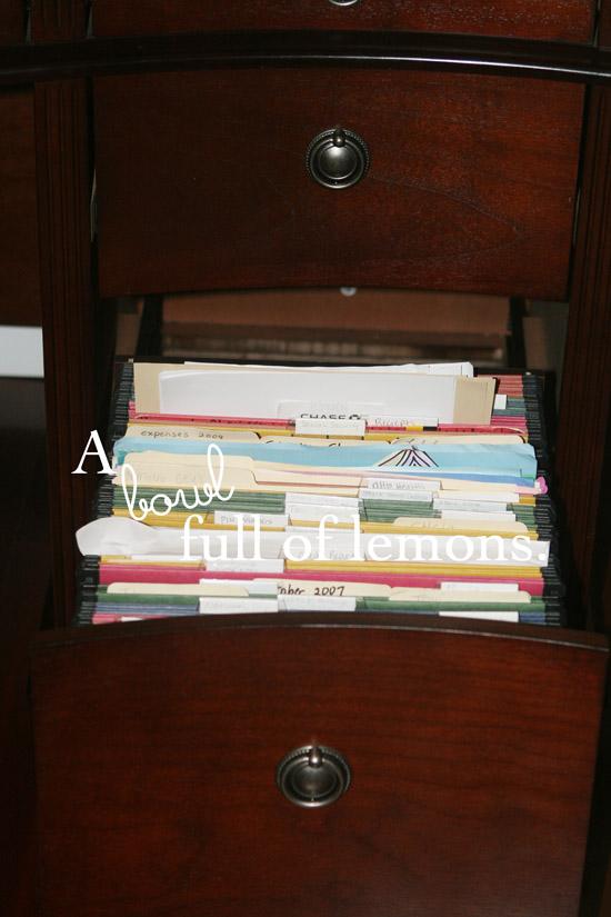 Organizing my filing cabinet! | A Bowl Full of Lemons