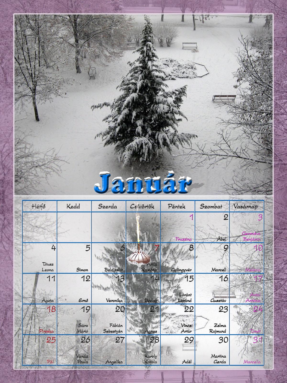 naptár 2010 január Sztrega: 2010 naptár   január naptár 2010 január