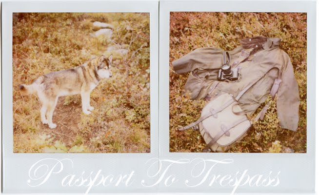passport to trespass [polaroids]