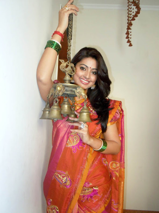 Sneha in Traditional Silk Saree Cute Photos